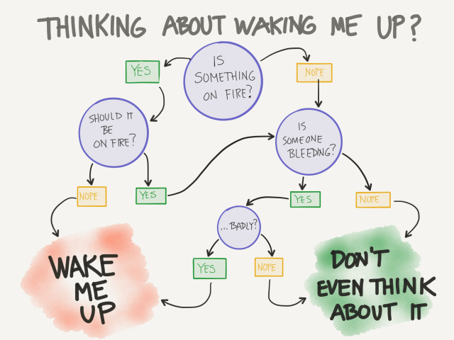 Thinking of waking me up? Check this handy flow chart first.